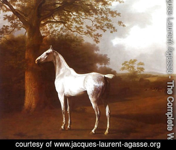 Jacques Laurent Agasse - White Horse in Pasture