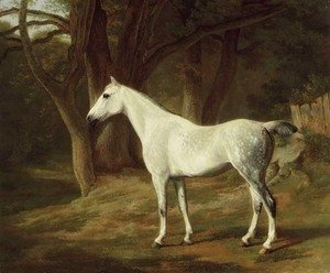Jacques Laurent Agasse - A grey hunter in a wooded landscape