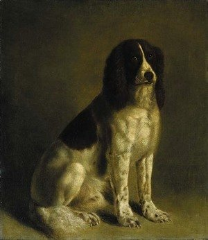 Jacques Laurent Agasse - A springer spaniel