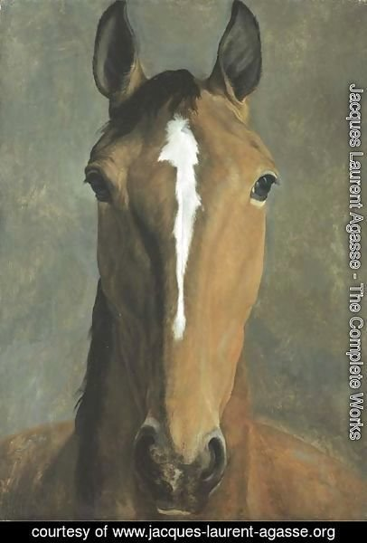 Jacques Laurent Agasse - Head of a bay horse