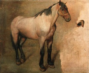 Jacques Laurent Agasse - Study of a bay Horse