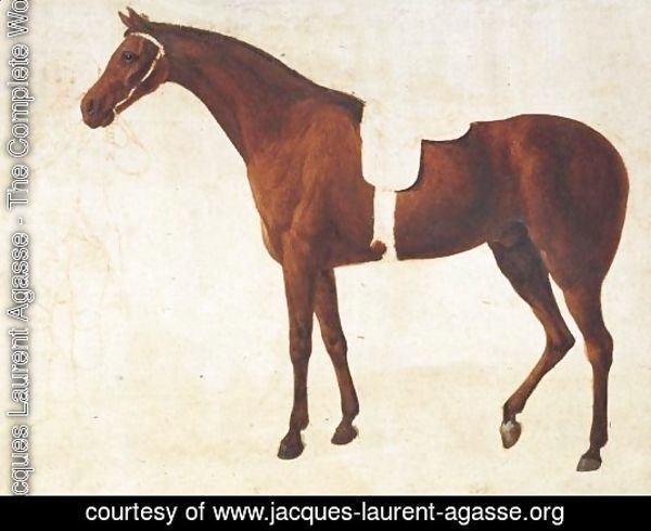 Study Of A Saddled Horse Held By A Man At The Bridle