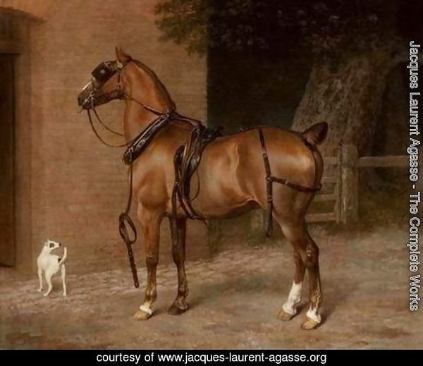 A Carriage Horse
