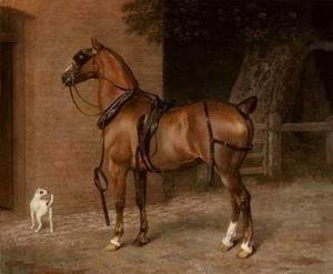 Jacques Laurent Agasse - A Carriage Horse