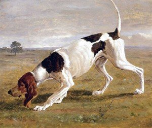 Jacques Laurent Agasse - A Pointer In A Landscape